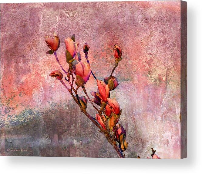 J Larry Walker Acrylic Print featuring the digital art Tulip Tree Budding by J Larry Walker