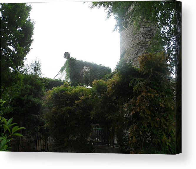 Stone Acrylic Print featuring the photograph Undergrowth And Overgrowth by James Potts