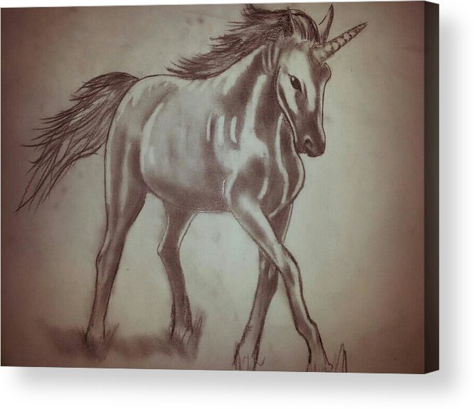 Handmade Drawing Made With Granite On Paper Acrylic Print featuring the drawing Unicorn by Giuseppe Amodeo
