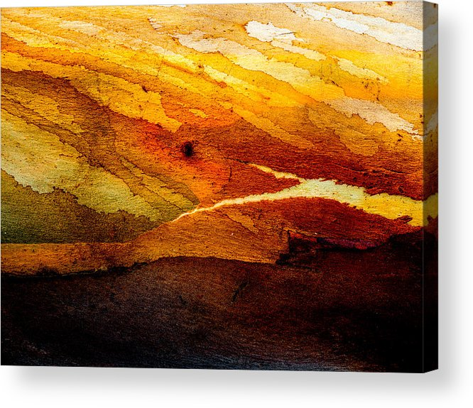 Weathered Acrylic Print featuring the photograph Weathered Wood Landscape by Hakon Soreide