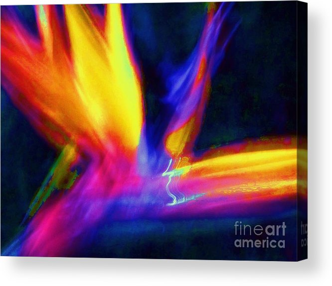 Wings Acrylic Print featuring the photograph Wings Of Color Abstract by Eric Schiabor
