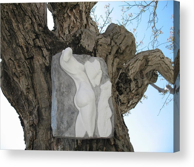 Nude Woman Torso Sculpture Acrylic Print featuring the relief Woman Torso - Cast 1 by Flow Fitzgerald