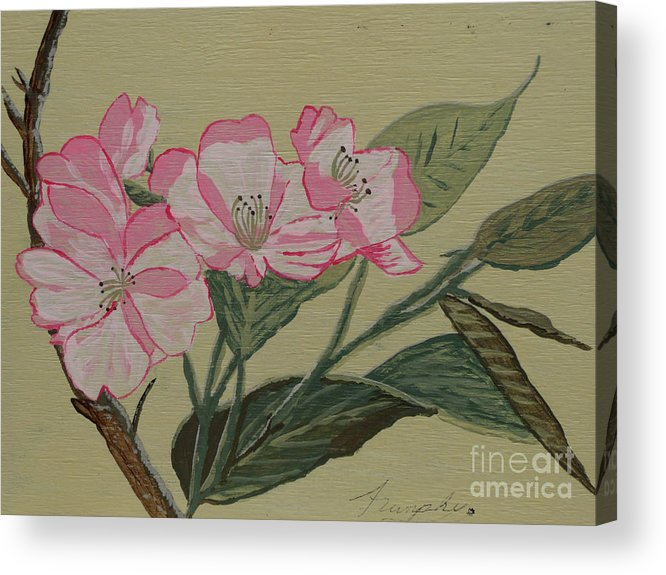 Yamazakura Acrylic Print featuring the painting Yamazakura Or Cherry Blossom by Anthony Dunphy