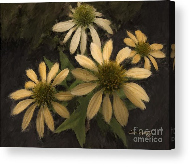 Susan Lipschutz Acrylic Print featuring the digital art Yellow Coneflowers by Susan Lipschutz