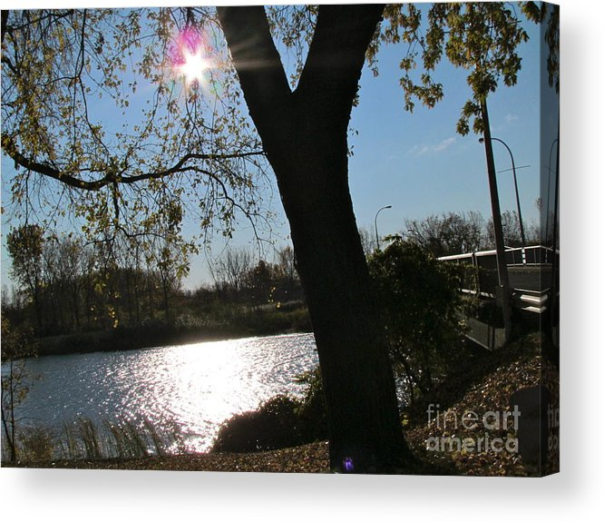 Landscape Acrylic Print featuring the photograph Sun Star by Louise Laliberte