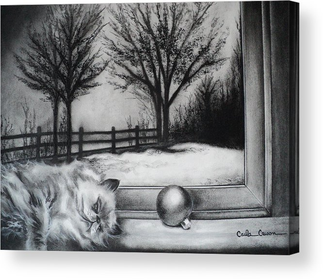 Cat Acrylic Print featuring the drawing A Lazy Winter Day by Carla Carson