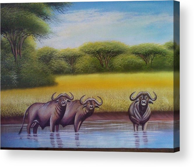 Acrylic Print featuring the painting African Buffalo by John