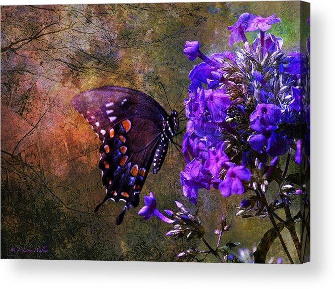 J Larry Walker Acrylic Print featuring the digital art Busy Spicebush Butterfly by J Larry Walker