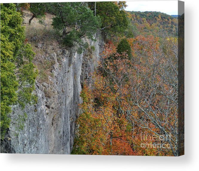 Buzzards Roost Acrylic Print featuring the photograph Buzzards Roost by Jennifer Kelly