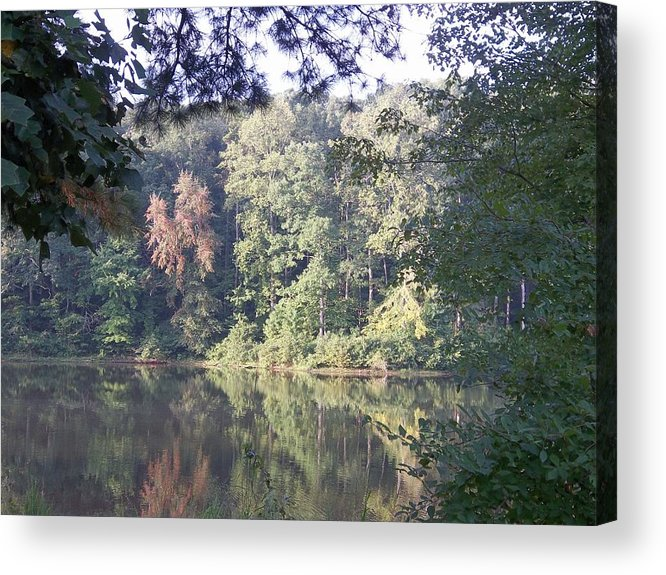 Trees Acrylic Print featuring the photograph Colors Of Autumn by Lynnette Brashear