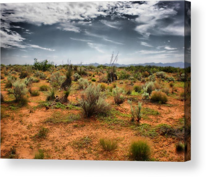 Desert Acrylic Print featuring the photograph Desert Of New Mexico by Thomas MacPherson Jr