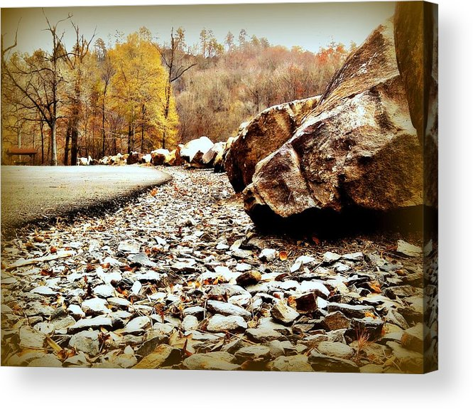 Landscape Acrylic Print featuring the photograph Fall Road by Becky Foster