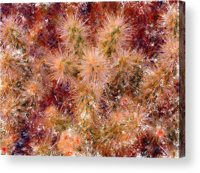 Fireworks Acrylic Print featuring the digital art Fireworks Explosion by Marilyn Sholin
