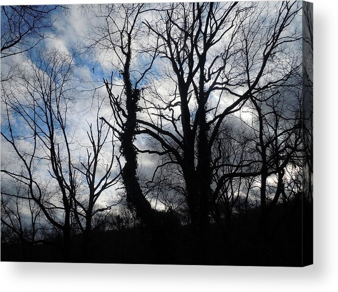 Photographic Landscape Acrylic Print featuring the painting From This Earth by James Guentner