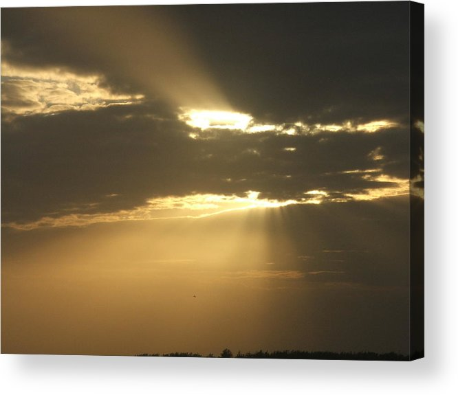 Sunrise Acrylic Print featuring the photograph Golden Sunrise by Renata Mayes