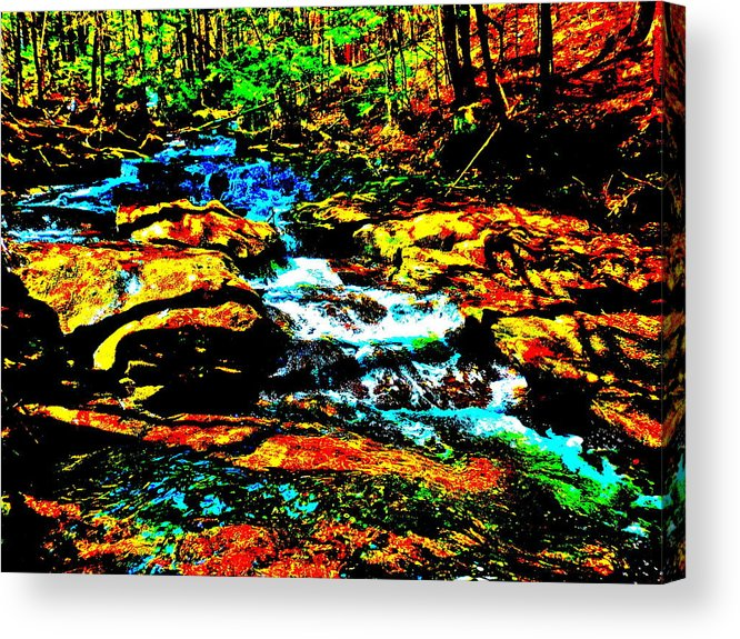 Landscape Acrylic Print featuring the photograph Hyper Childs Brook Z 56 by George Ramos