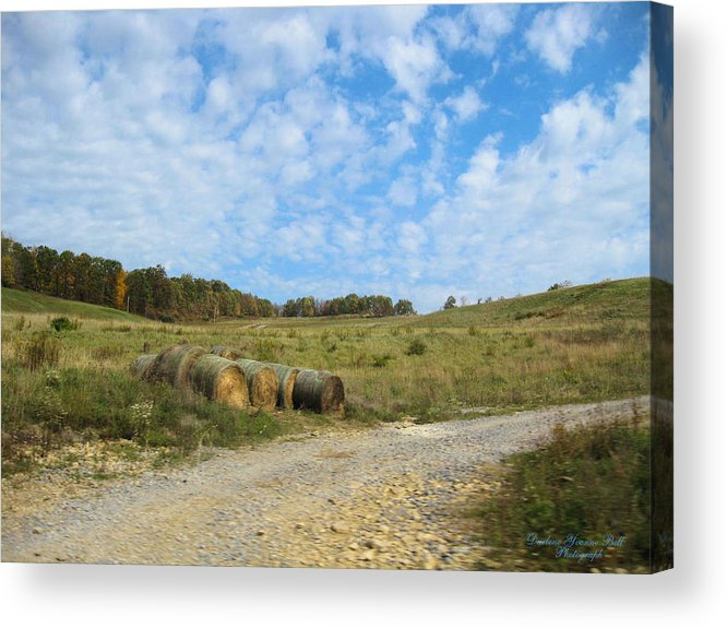 Field Acrylic Print featuring the photograph In A Country Field by Darlene Bell