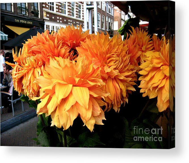 Orange Acrylic Print featuring the photograph Orange Dutch by Jessica Smeira