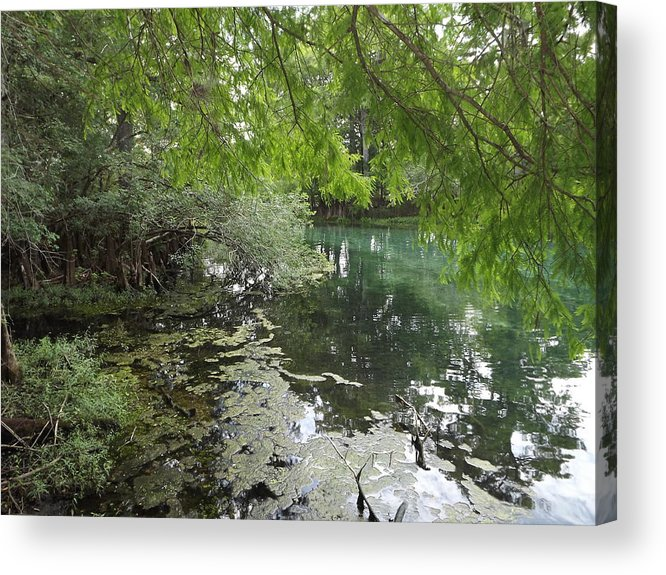 Landscape Acrylic Print featuring the photograph Over Hang by Pamela Stanford