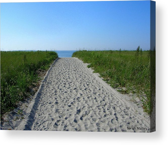 Waterscape Acrylic Print featuring the photograph Popular Beach Path by Sarah Malley