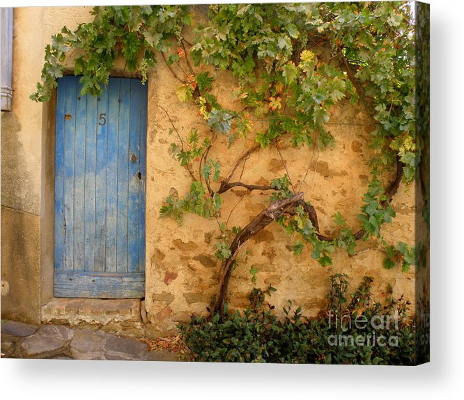 Door Acrylic Print featuring the photograph Provence Door 5 by Lainie Wrightson
