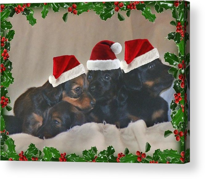 Christmas Acrylic Print featuring the photograph Ready For Christmas by Victoria Sheldon