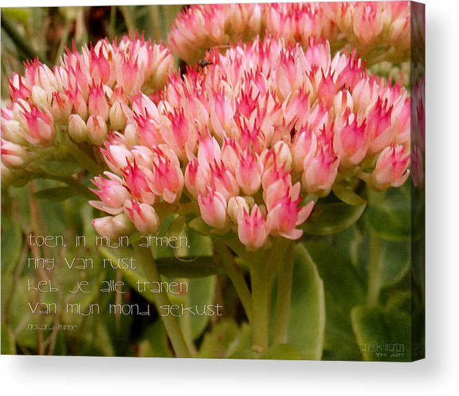 Nature Acrylic Print featuring the photograph Ring Van Rust by Yvon van der Wijk
