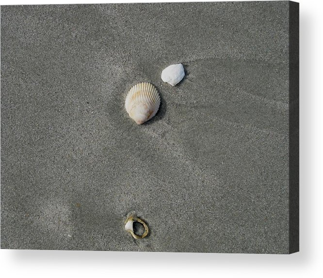 Kathy Long Acrylic Print featuring the photograph Shells In The Sand by Kathy Long