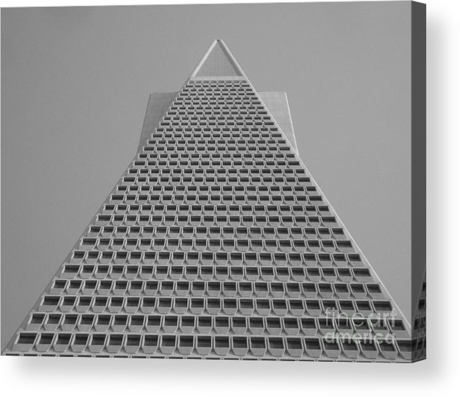 Building Acrylic Print featuring the photograph The Tip Of San Francisco by Steve Harben