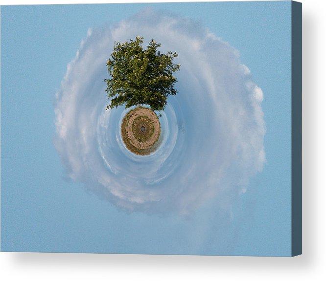 Gulf Of Bothnia Acrylic Print featuring the photograph The Tree Of Life by Jouko Lehto