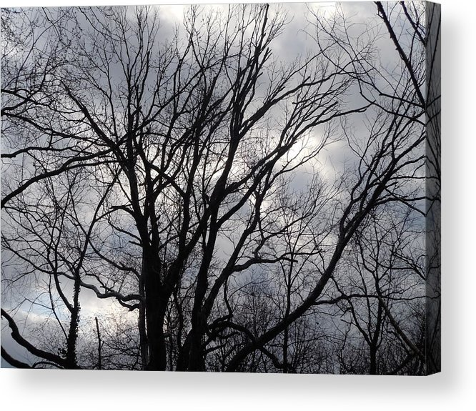 Photographic Landscape Acrylic Print featuring the painting Trees At Dusk by James Guentner