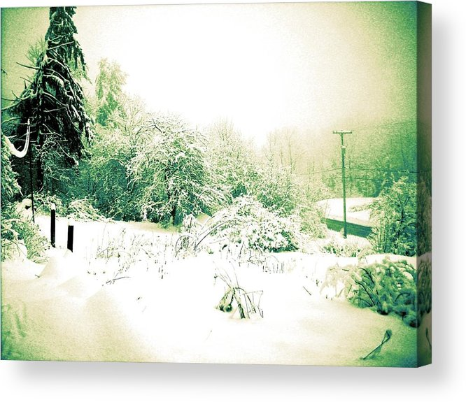 Winter Acrylic Print featuring the photograph Vintage Winter Photograph by EM Michael