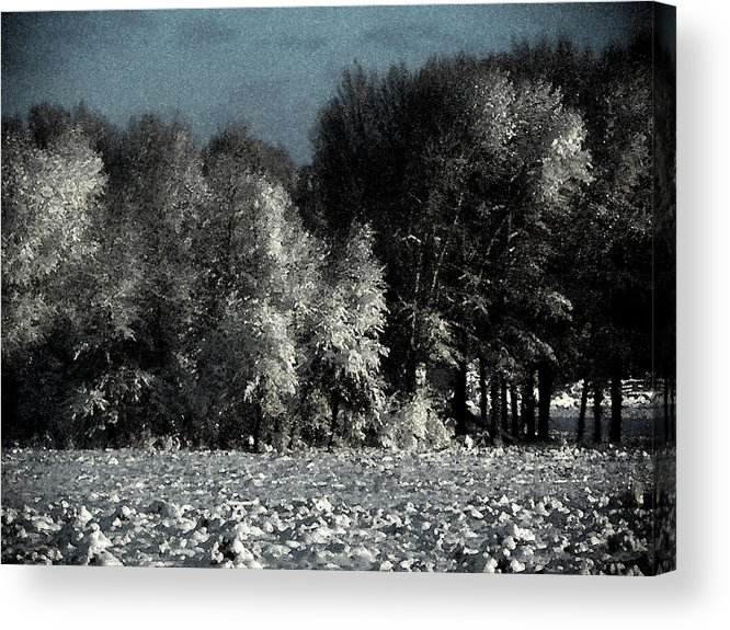 Abstract Acrylic Print featuring the photograph Wyoming Snowstorm October 2011 by Lenore Senior