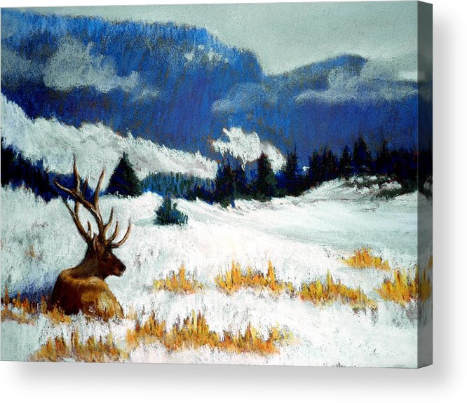 Mountain Snow Landscape Painting Acrylic Print featuring the pastel High Country Elk by Curt Peifley