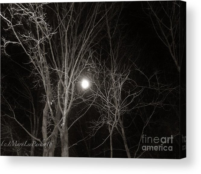 Photograph Acrylic Print featuring the mixed media Lonely Night by MaryLee Parker
