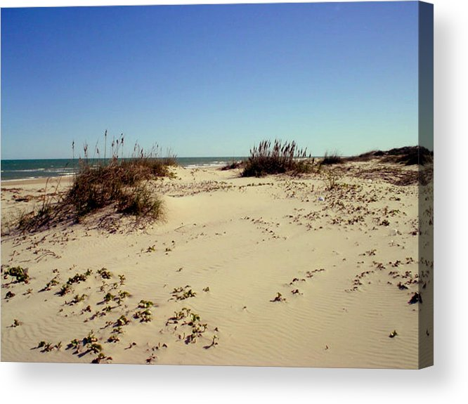 Sand Acrylic Print featuring the photograph South Padre Island Dunes by Evelyn Patrick