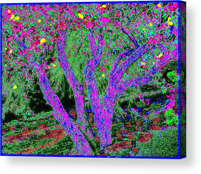 Abstract Landscape Acrylic Print featuring the painting 007h Abstract Arcadia Tree by Ed Immar