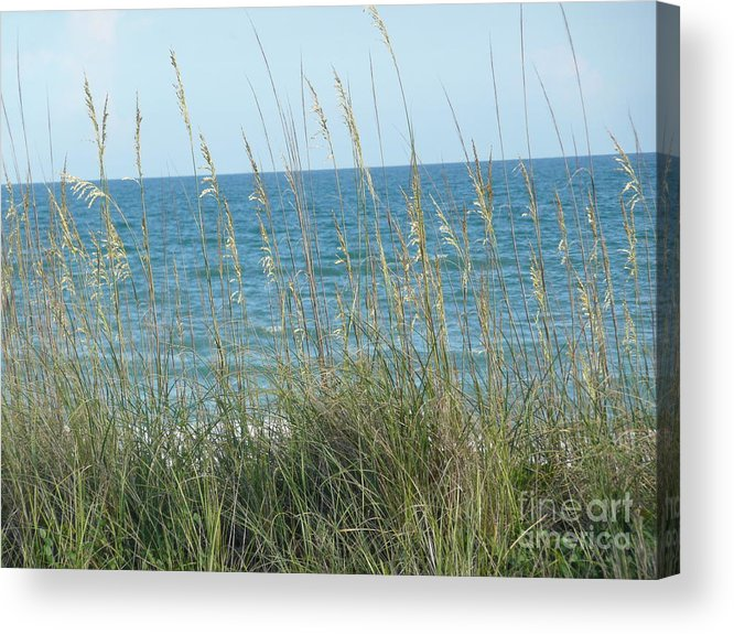 Beach Acrylic Print featuring the photograph Afternoon At The Beach by Barb Montanye Meseroll