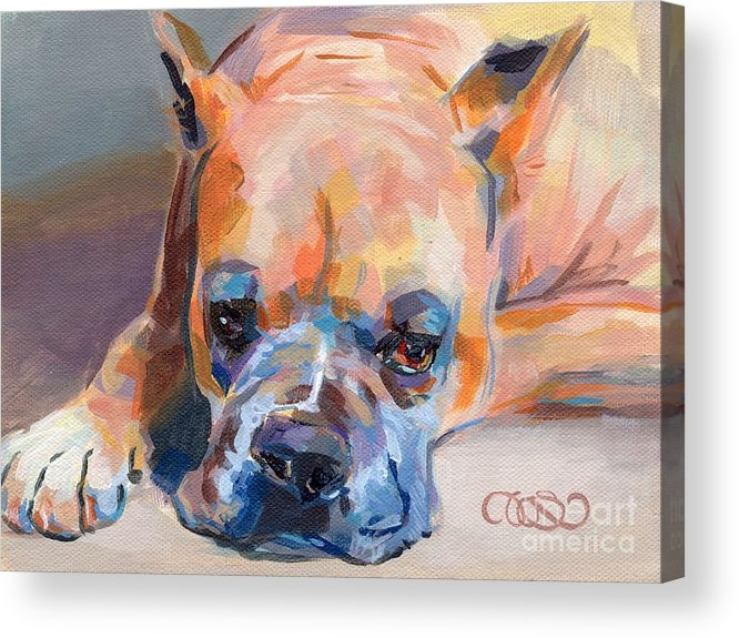 Boxer Acrylic Print featuring the painting Andre by Kimberly Santini