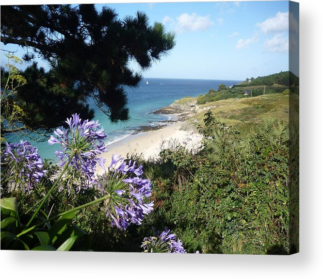 Coast Brittany Flowers Sea Ocean Bay Pines France Acrylic Print featuring the photograph Bel-ile-en-mer by Lizzy Forrester