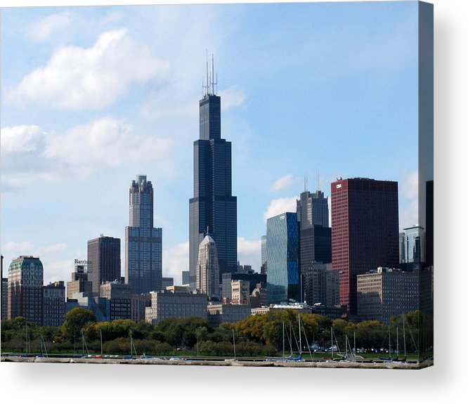 Chicago Acrylic Print featuring the photograph Chicago Skyline by Cindy Kellogg