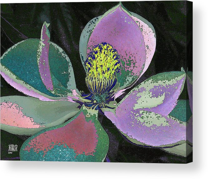 Flowers Acrylic Print featuring the digital art Magnolia by Michele Caporaso