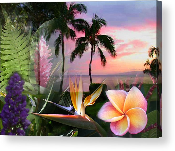 Bird Of Paradise Acrylic Print featuring the photograph Natural Beauty by Angie Hamlin