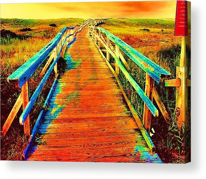 Endless Landscape Acrylic Print featuring the painting 2355z Wooden Walkway by Ed Immar