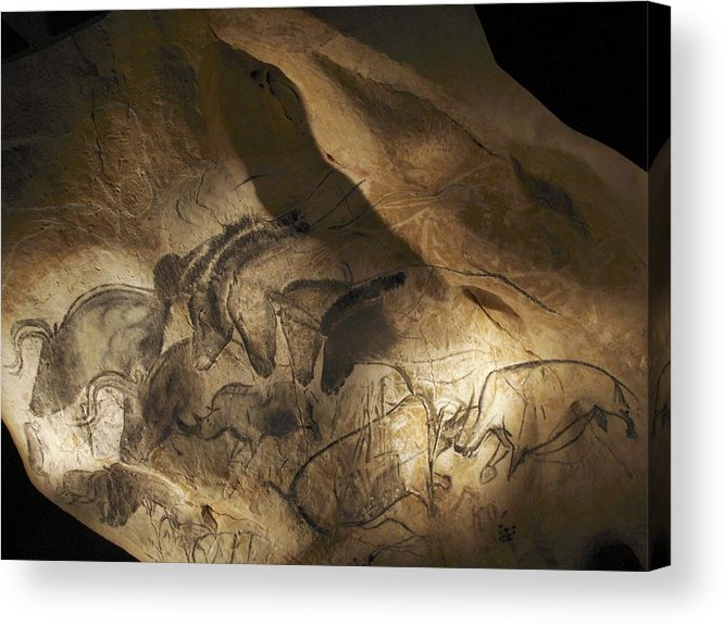 Animal Acrylic Print featuring the photograph Stone-age Cave Paintings, Chauvet, France by Javier Truebamsf