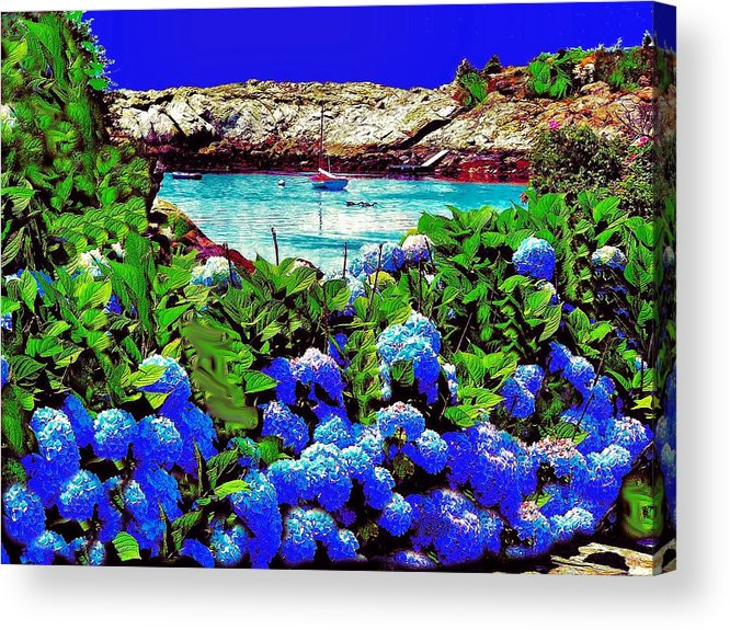 Landscape Acrylic Print featuring the photograph 75h Ocean Flowers by Ed Immar