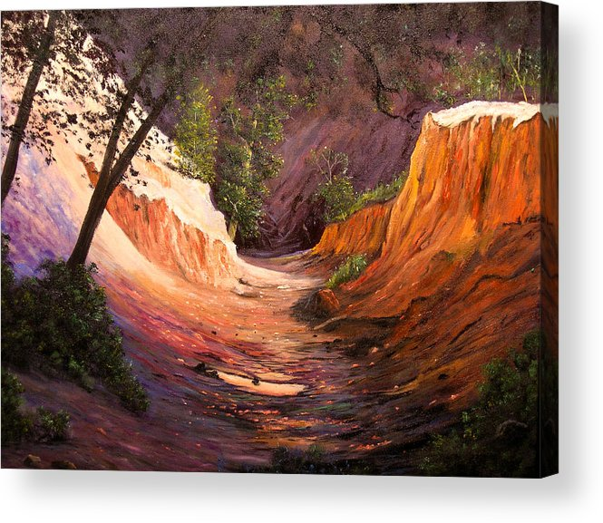 A Painting A Day Acrylic Print featuring the painting A Walk Through The Canyon by Connie Tom
