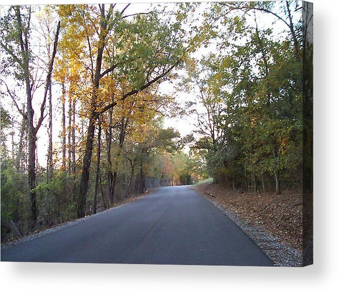 Road Acrylic Print featuring the photograph Alabama Backroads by Paula Ferguson