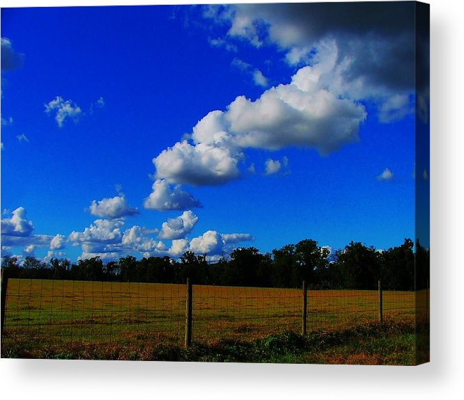 Clouds Acrylic Print featuring the photograph All About Clouds by Judy Waller