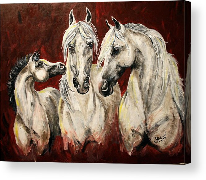 Horse Colt Lipizzan Mare Stallion Foal Acrylic Print featuring the painting Allure by BJ Redmond